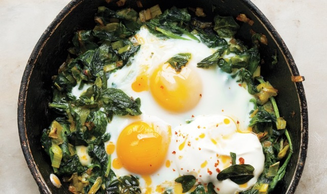 A Diet of Eggs Can Help You Lose Weight