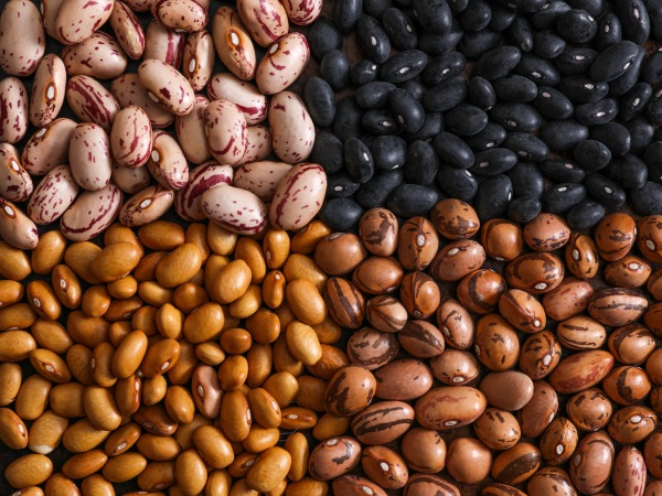 Beans Are The Key To Muscle Development