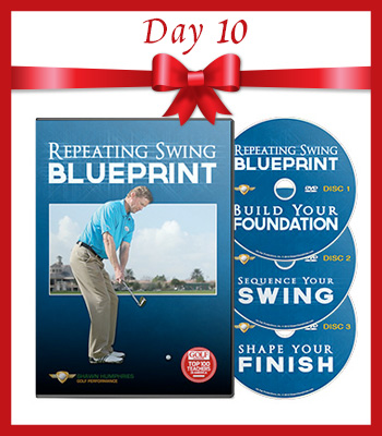 12.5 Deals of Christmas – Day 10 – Repeating Swing Blueprint