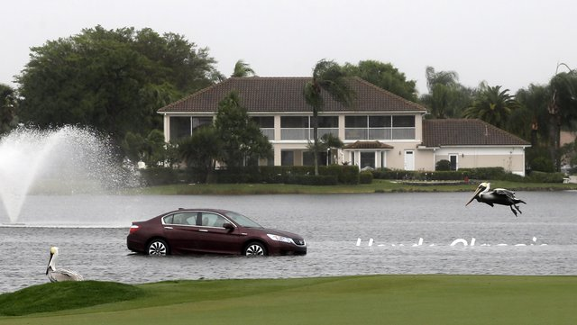 That's Something You Don't See Everyday! Check Out What Stopped The Honda Classic!